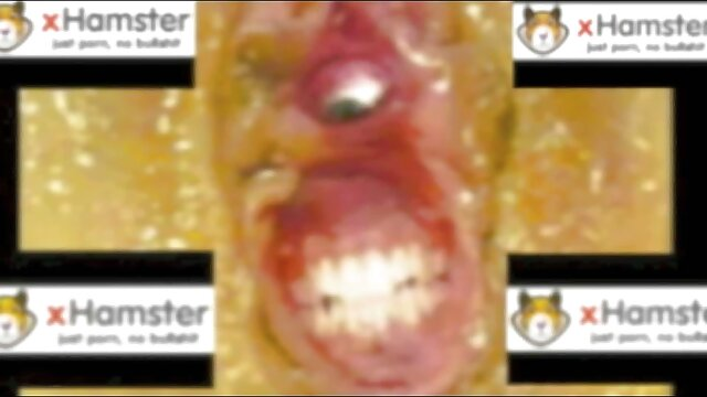 Le mec cheba sabah porno insère profondément une grosse bite dans l'anus d'une brune sexy